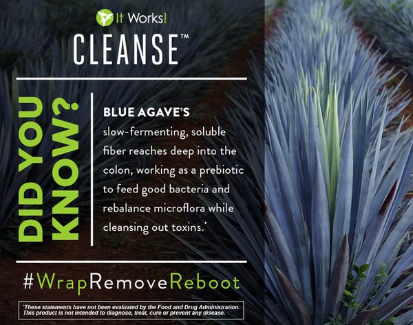 Cleanse1