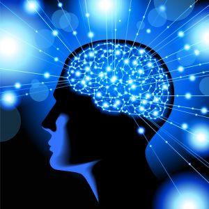 Sh-Brain-2-8.1